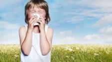 Alergija na pelode, prva pomoč